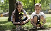 Eco Education